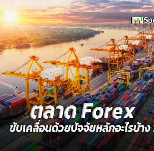 ตลาด Forex ขับเคลื่อนด้วยปัจจัยหลักอะไรบ้าง ?