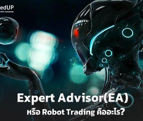 Expert Advisor(EA) หรือ Robot Trading คืออะไร ?